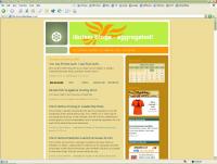 LibDemBlogs